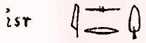 тамариск на египетском